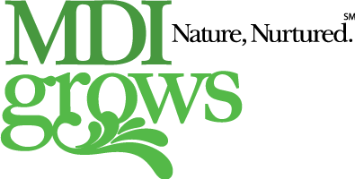 MDI Grows Landscaping Installations